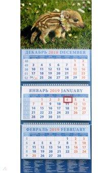 Календарь квартальный на 2019 год Год поросенка. Маленький кабанчик (14910)
