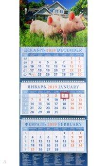Календарь квартальный на 2019 год Год поросенка. На даче (14912)