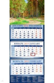 izmeritelplus.ru: Календарь 2019 Дорога в сосновом бору (14952).