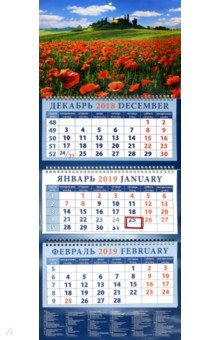 izmeritelplus.ru: Календарь 2019 Пейзаж с маками. Италия (14962).