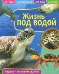 Детская энциклопедия. Жизнь под водой