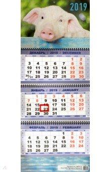izmeritelplus.ru: Квартальный календарь на 2019 год Символ года. Соло.