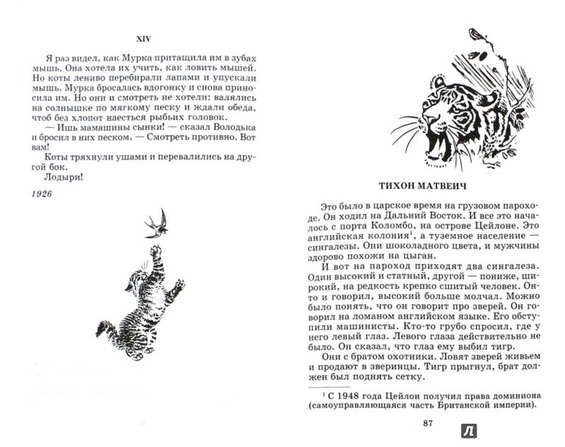 Иллюстрация 1 из 32 для Что бывало. Рассказы - Борис Житков | Лабиринт - книги. Источник: Лабиринт