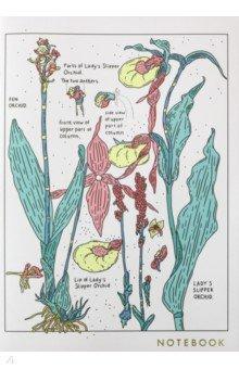 Тетрадь 30 листов, А4, клетка, кремовые страницы, Orchid (1100082)