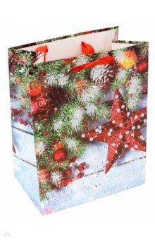 Пакет новогодний ламинированный (180 х 227 х 100 мм) (MC 023)