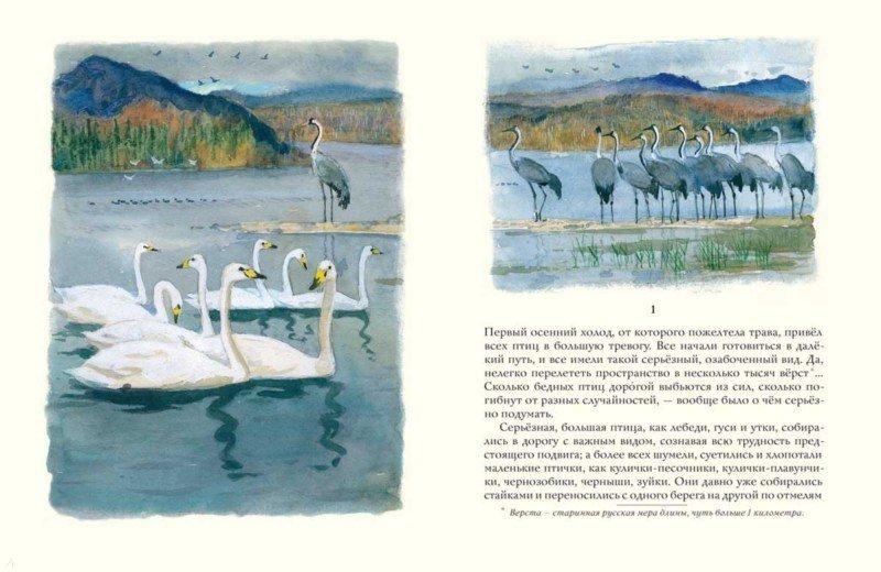 Иллюстрация 1 из 28 для Серая шейка - Дмитрий Мамин-Сибиряк | Лабиринт - книги. Источник: Лабиринт