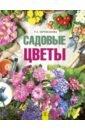 Садовые цветы, Карписонова Римма Анатольевна