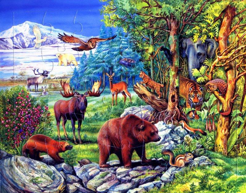 Иллюстрация 1 из 3 для Животные всего мира | Лабиринт - книги. Источник: Лабиринт