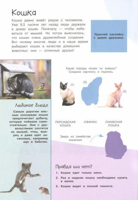 Иллюстрация 1 из 6 для Смотри и учись. Наши питомцы | Лабиринт - книги. Источник: Лабиринт