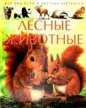 Лесные животные. Детская энциклопедия