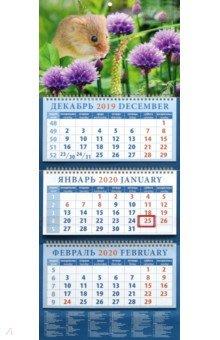 Zakazat.ru: Календарь 2020 Символ года. Очаровательный мышонок (14021).