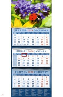 Zakazat.ru: Календарь 2020 квартальный Божья коровка на фоне незабудок (14049).