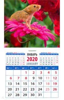 """Календарь 2020 """"Символ года. Вдыхая аромат цветов"""" (20026)"""