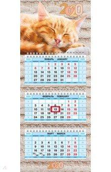 Zakazat.ru: Календарь квартальный на 2020 год трехблочный МИНИ-3, Нежность (3Кв3гр5ц_19127).