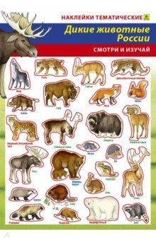 Купить Дикие животные России. Наклейки тематические, РУЗ Ко, Альбомы с наклейками