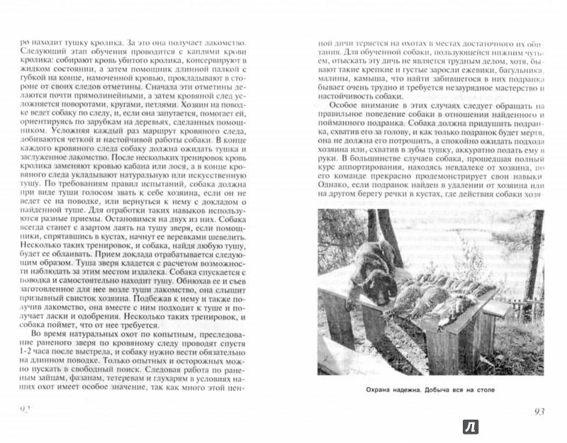 Иллюстрация 1 из 19 для Охота с дратхааром - Алексей Лопатин-Бремзен | Лабиринт - книги. Источник: Лабиринт