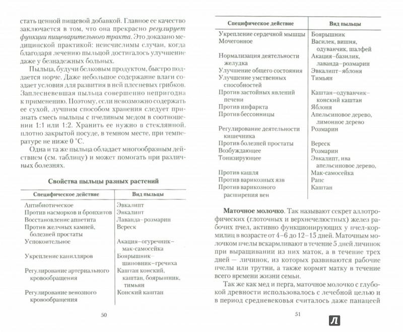 Иллюстрация 1 из 11 для Мед: мифы и реальность - Иван Неумывакин | Лабиринт - книги. Источник: Лабиринт