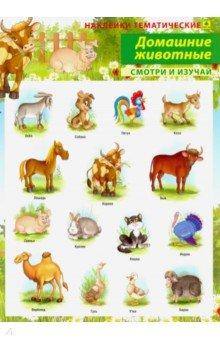 Купить Домашние животные. Наклейки тематические, РУЗ Ко, Наклейки детские