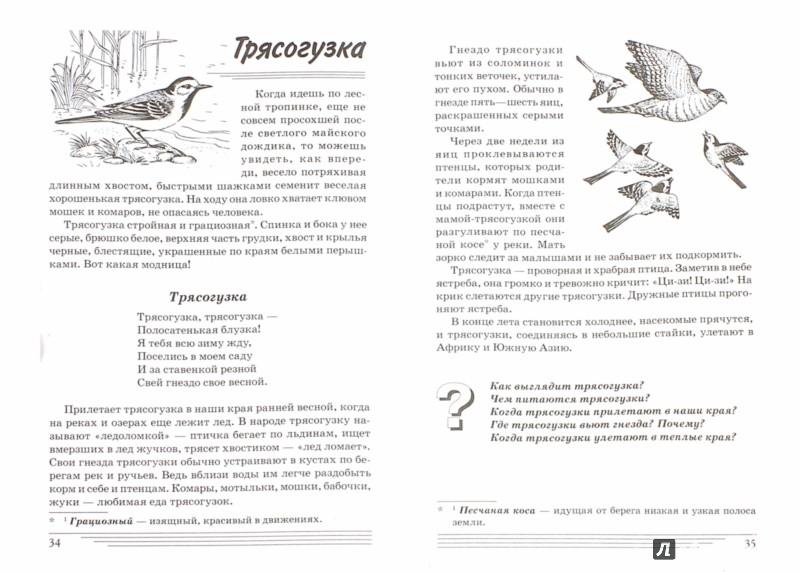 Иллюстрация 1 из 14 для Птицы. Какие они? Книга для воспитателей, гувернеров и родителей - Татьяна Шорыгина   Лабиринт - книги. Источник: Лабиринт