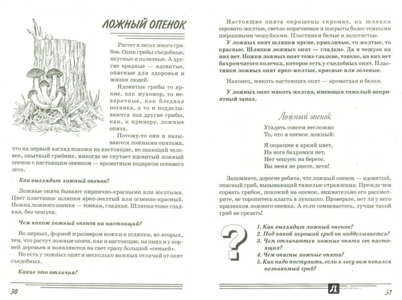 Иллюстрация 1 из 31 для Грибы. Какие они? Книга для воспитателей, гувернеров и родителей - Татьяна Шорыгина   Лабиринт - книги. Источник: Лабиринт