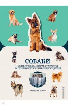 Купить Собаки, Эксмодетство, Животный и растительный мир