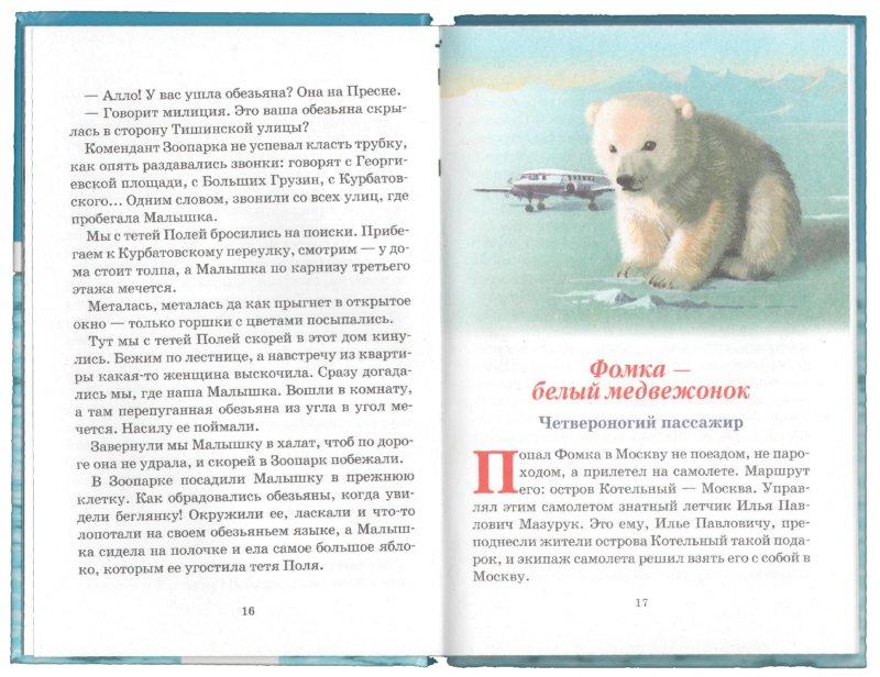 Иллюстрация 1 из 11 для Фомка - белый медвежонок - Вера Чаплина | Лабиринт - книги. Источник: Лабиринт
