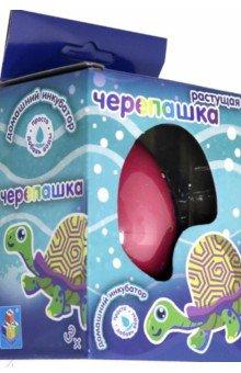 Купить Домашний инкубатор. Яйцо с растущей черепашкой, 1TOY, Наборы для опытов