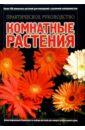 Быховец Анатолий Иосифович Комнатные растения: Практическое руководство