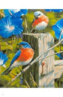Купить Картина для раскрашивания по номерам Птички , 40х50 см (M-11425), MAZARI, Создаем и раскрашиваем картину