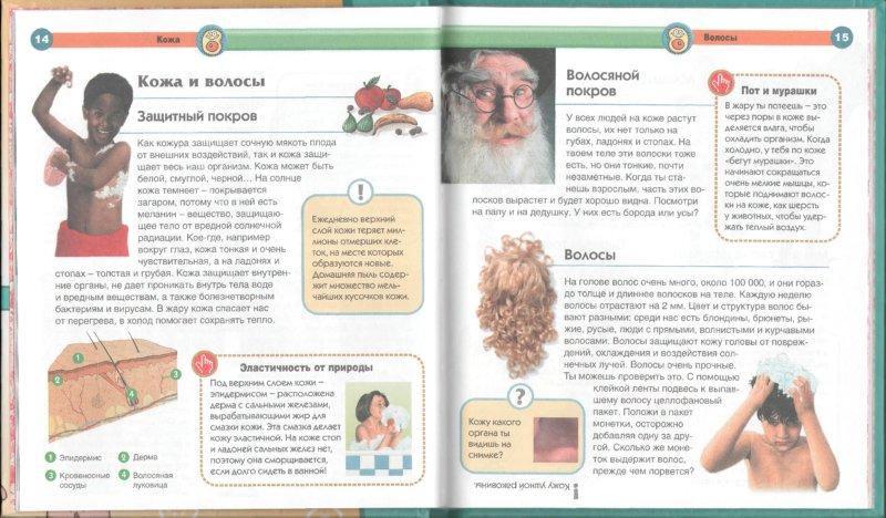 Иллюстрация 1 из 23 для Тело человека - Элиза Прати   Лабиринт - книги. Источник: Лабиринт