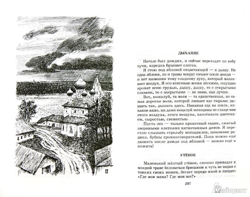 Иллюстрация 1 из 30 для Матренин двор. Рассказы - Александр Солженицын   Лабиринт - книги. Источник: Лабиринт