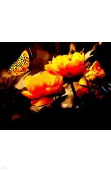 Купить Рисование по номерам Бабочки , 40х50 см. (В034), Русская живопись, Создаем и раскрашиваем картину