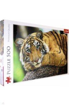 Купить Puzzle-500. Тигр (37397), Trefl, Пазлы (400-600 элементов)