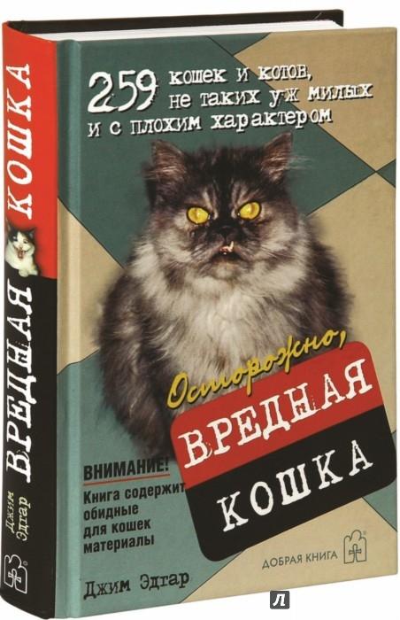 Иллюстрация 1 из 14 для Осторожно, вредная кошка - Джим Эдгар | Лабиринт - книги. Источник: Лабиринт