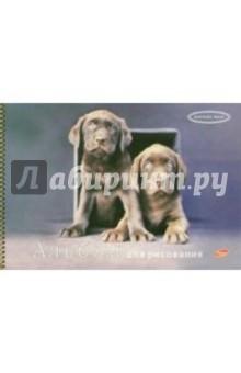 Альбом для рисования 40 листов 2790-2791 спираль (собаки).