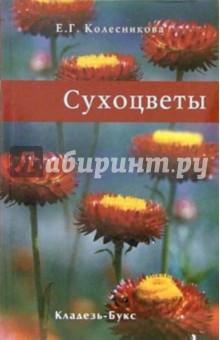 Сухоцветы - Елена Колесникова