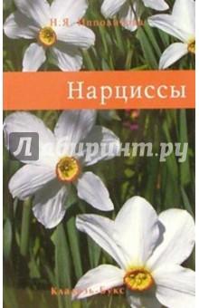 Нарциссы - Нина Ипполитова