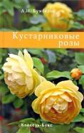 Л.И. Бумбеева: Кустарниковые розы