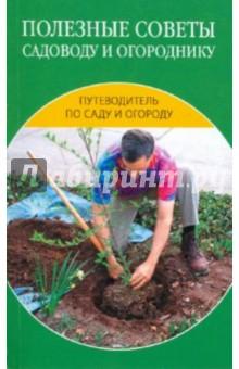 Полезные советы садоводу и огороднику - Надежда Зимина