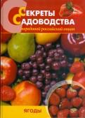 Ниточкина, Колбасина, Раджабов: Секреты садоводства. Ягоды