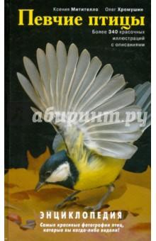 Певчие птицы - Митителло, Хромушин