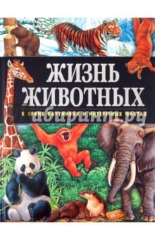 Жизнь животных в ярких картинках и интересных фактах - Джойс Поуп