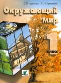 Чудинова, Букварева: Окружающий мир. 1 класс. Учебник. ФГОС