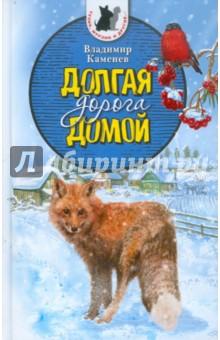 Долгая дорога домой - Владимир Каменев