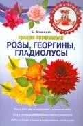 Елена Власенко: Ваши любимые розы, георгины, гладиолусы