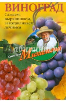 Виноград. Сажаем, выращиваем, заготавливаем, лечимся - Николай Звонарев