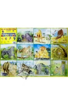Купить Плакат. Экзотические животные. Для самых маленьких ISBN: 978-5-86415-621-6