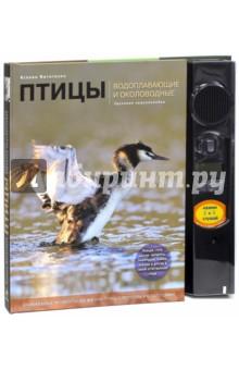 Птицы. Водоплавающие и околоводные. Звуковая энциклопедия (поганка)