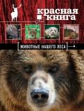 Александр Очеретний: Красная книга. Животные нашего леса