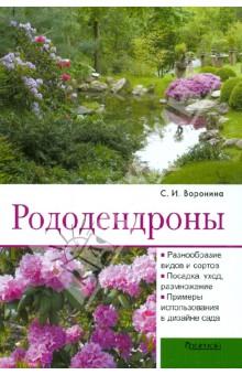Рододендроны - Светлана Воронина